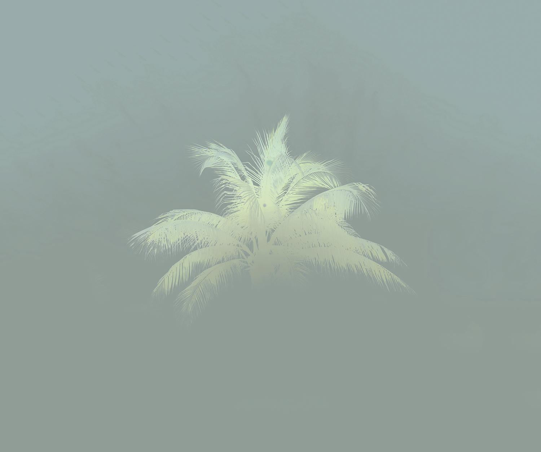 Floating Palm, 2016 ,  Alice Hargrave