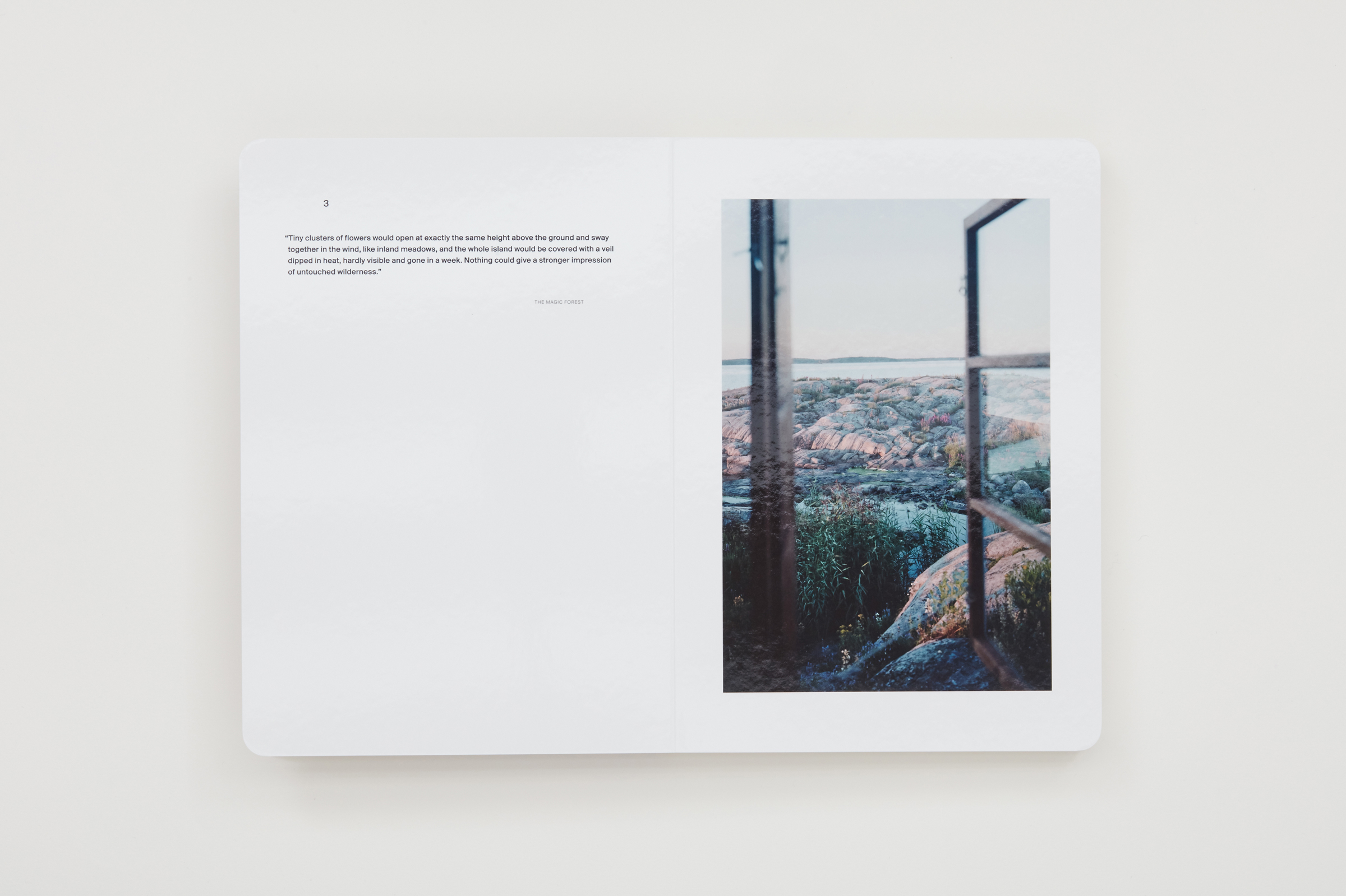 A Song for Windows  by Takashi Homma