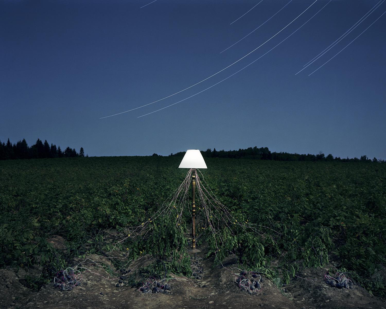 Potato Power, LaJoie Growers LLC, Van Buren, Maine, 2012