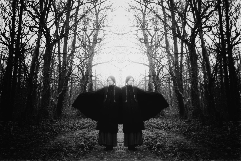 Les Oiseaux Obscurs ,  Isaure Anska