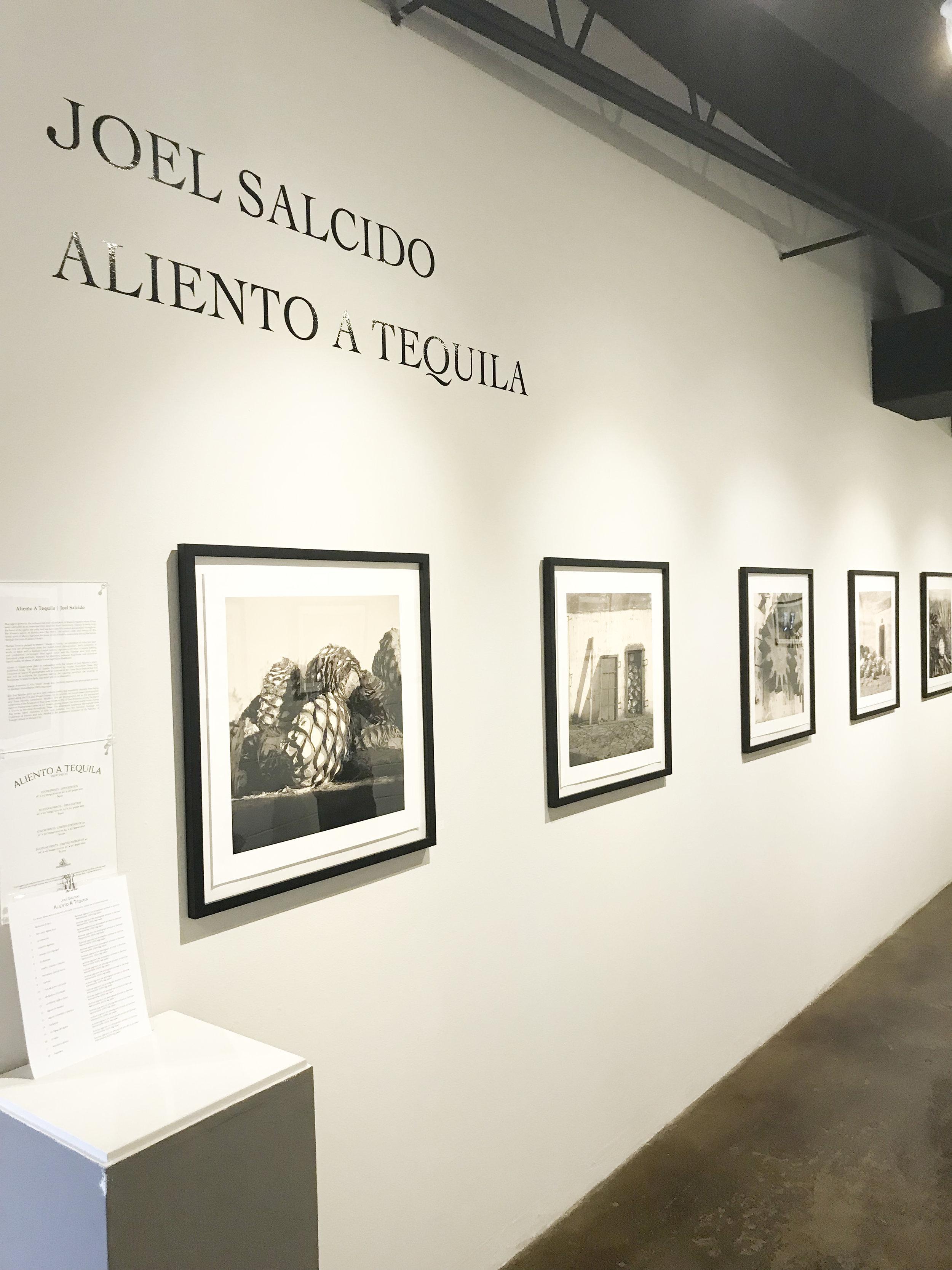 Joel Salcido at Gallery North