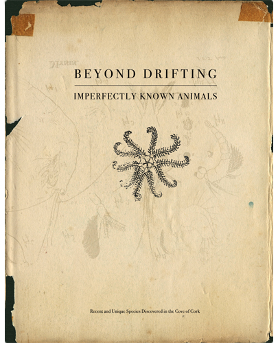 Beyond Drifting: Imperfectly Known Animals  by Mandy Barker