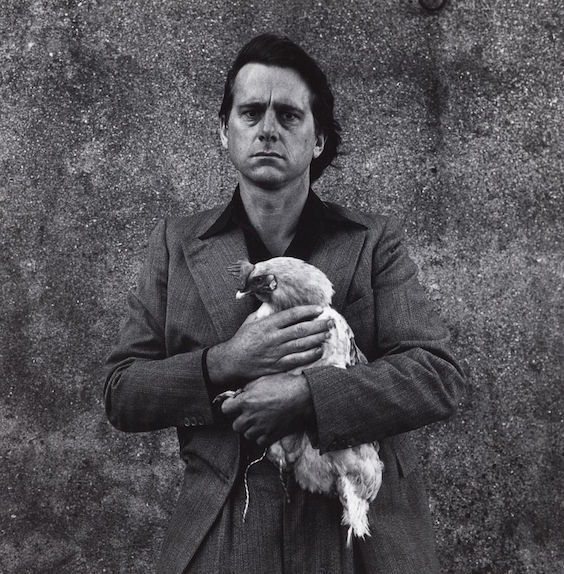 Peter Peryer,  Self portrait with Rooster,  1977.