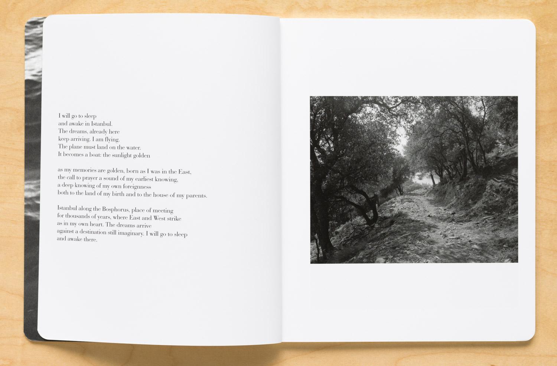 Journey by Marylynne Wrye