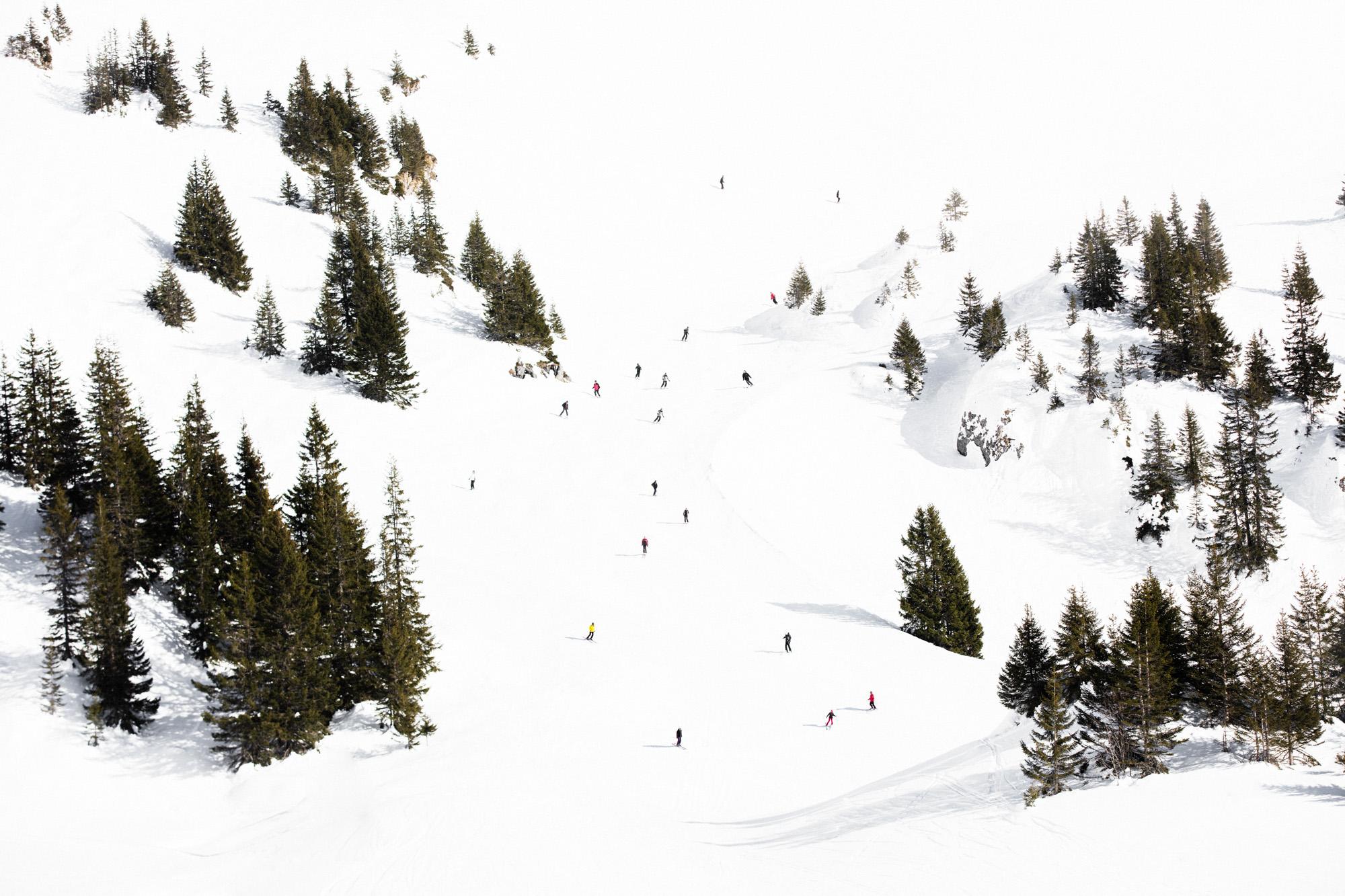Alpine ,  Lukas Griffin