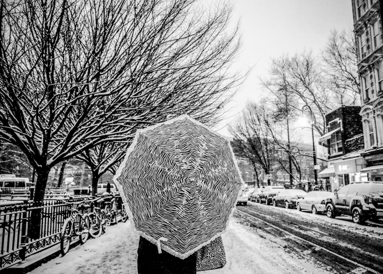 A Funky Winter ,  Sonia Goydenko