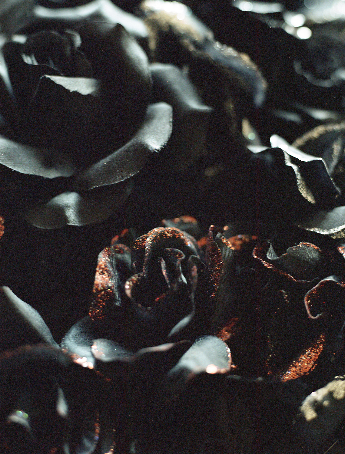 Dark Bouquet ,  Meghan Quinn