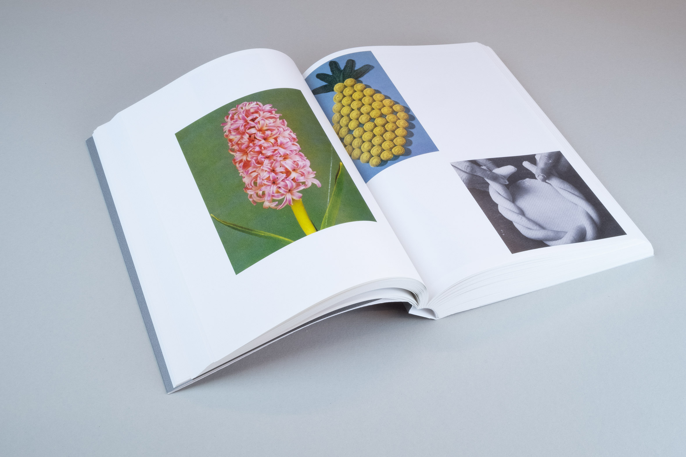 APE#112_RuthvanBeeck_How To Do The Flowers_ISBN9789490800871_19.jpg