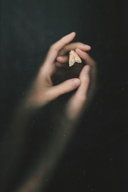 Silent Cradle ,  Natalia Drepina