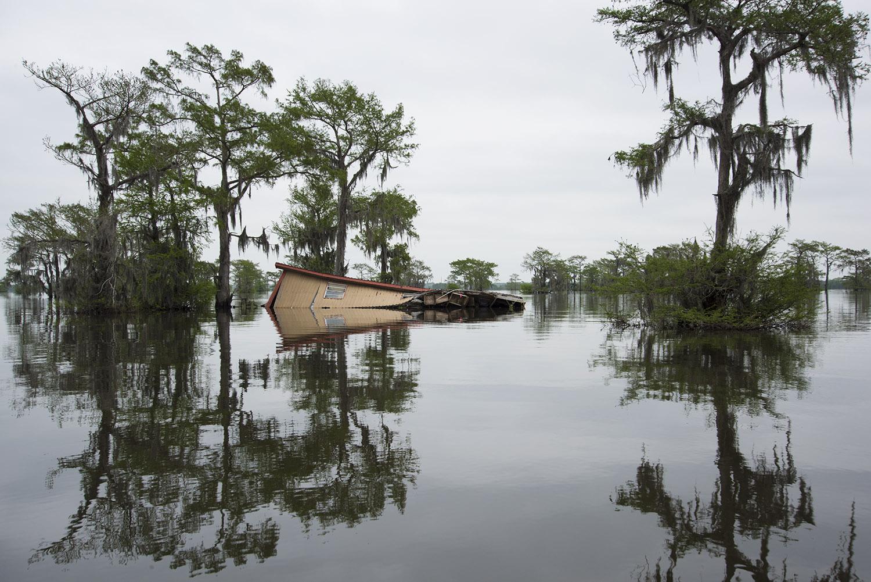 Atchafalaya Basin, Louisiana,  Virginia Hanusik