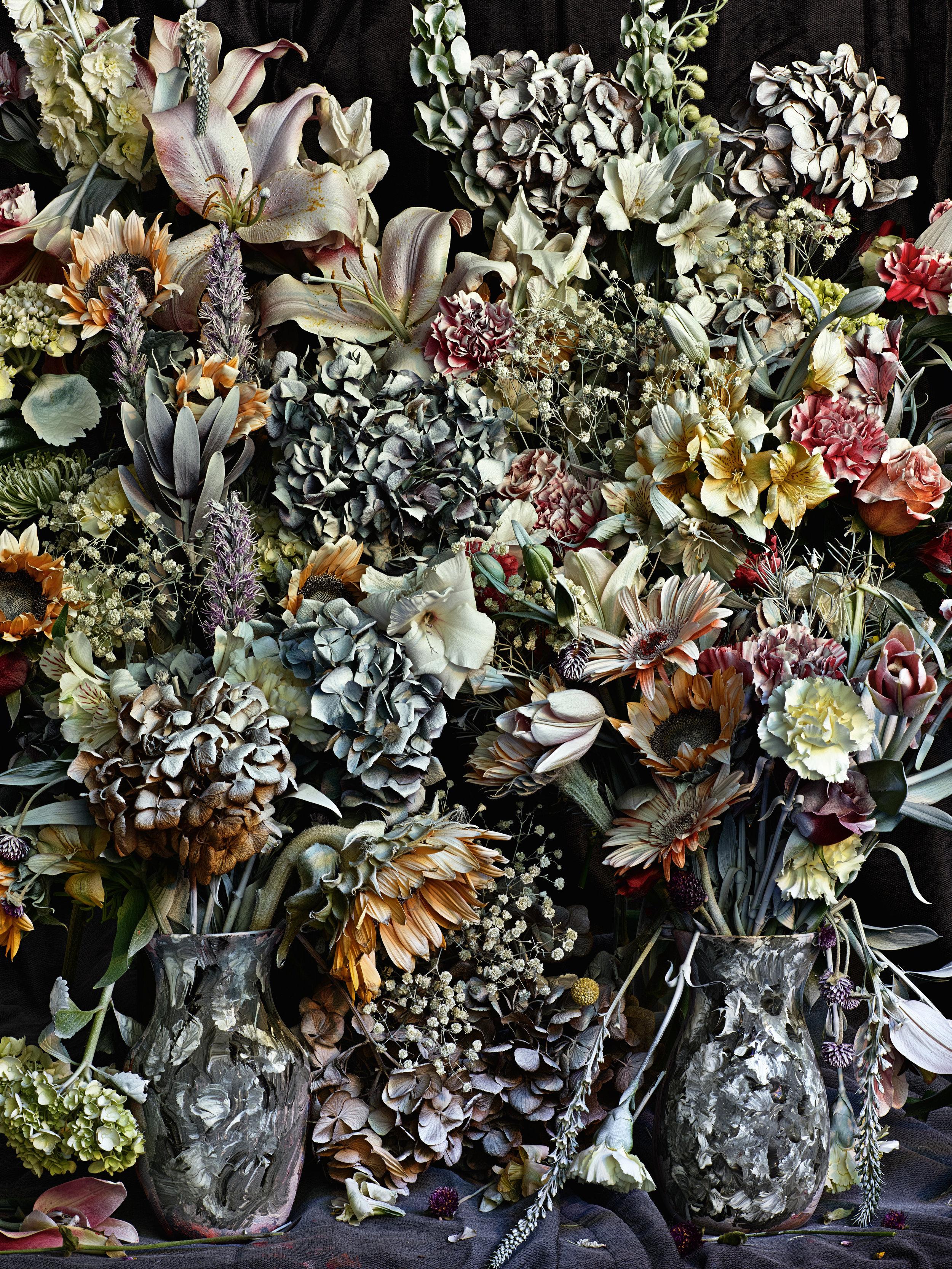 Flowers for Lisa #32,  Abelardo Morell