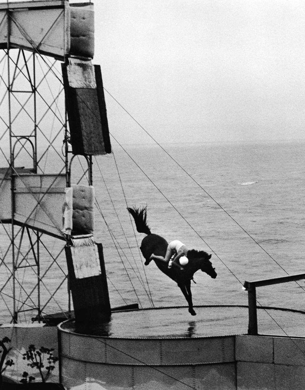 diving-horses-12.jpg