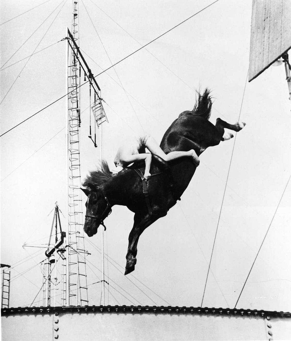 diving-horses-102.jpg