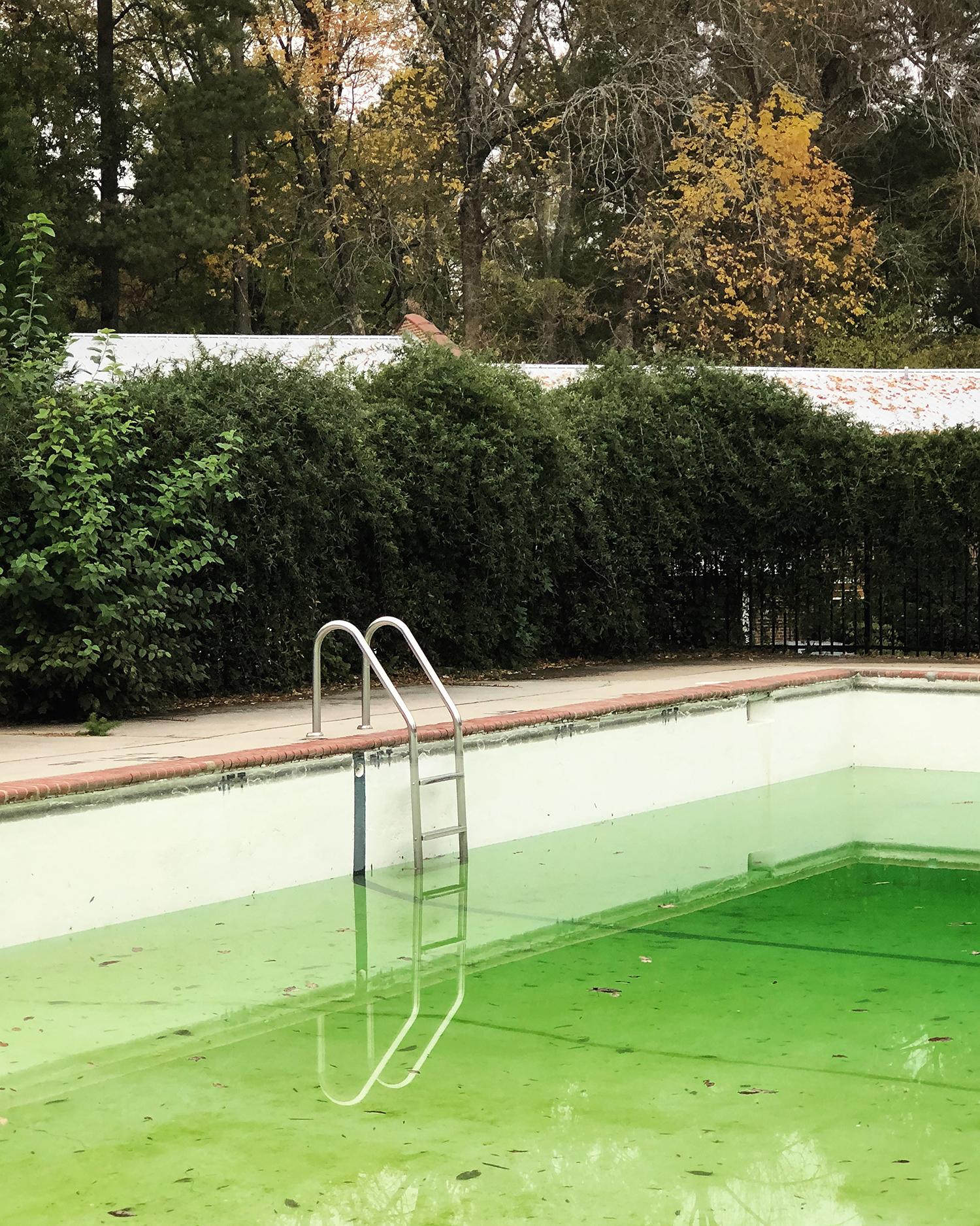 Fidelity Pool ,  Lindsay Metivier