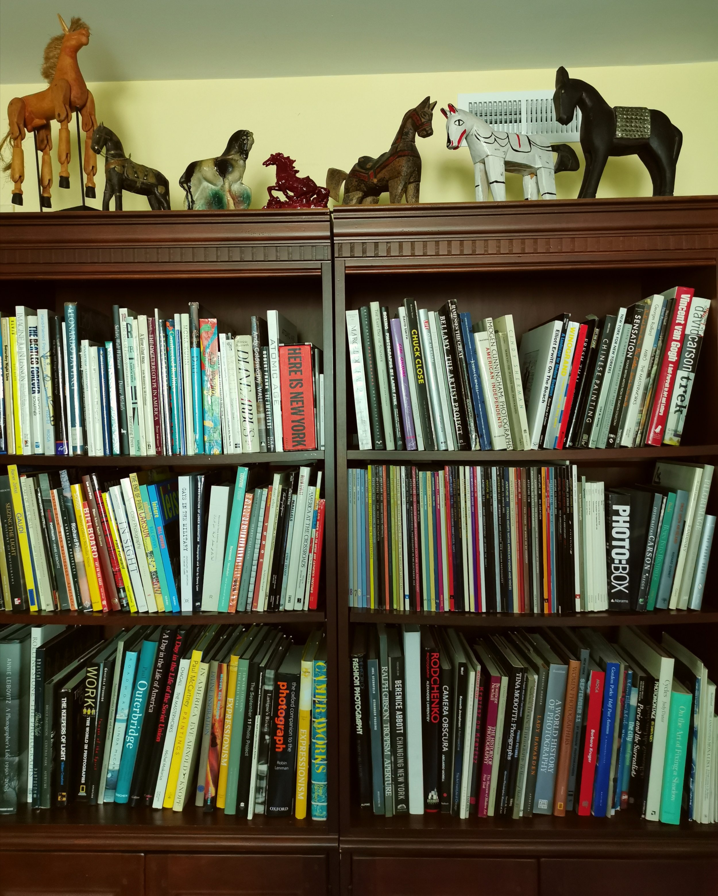 Horses stand guard over Marie Triller's photography book collection.
