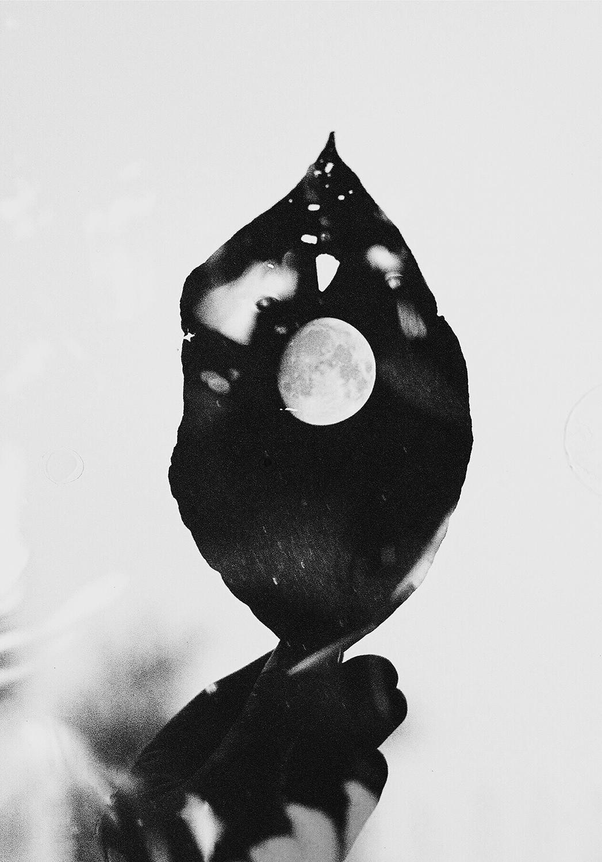 Autumn Moon ,  Mae Lynn Stoutenburg