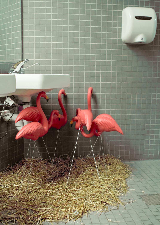 Flock ,  Rachael Hulme