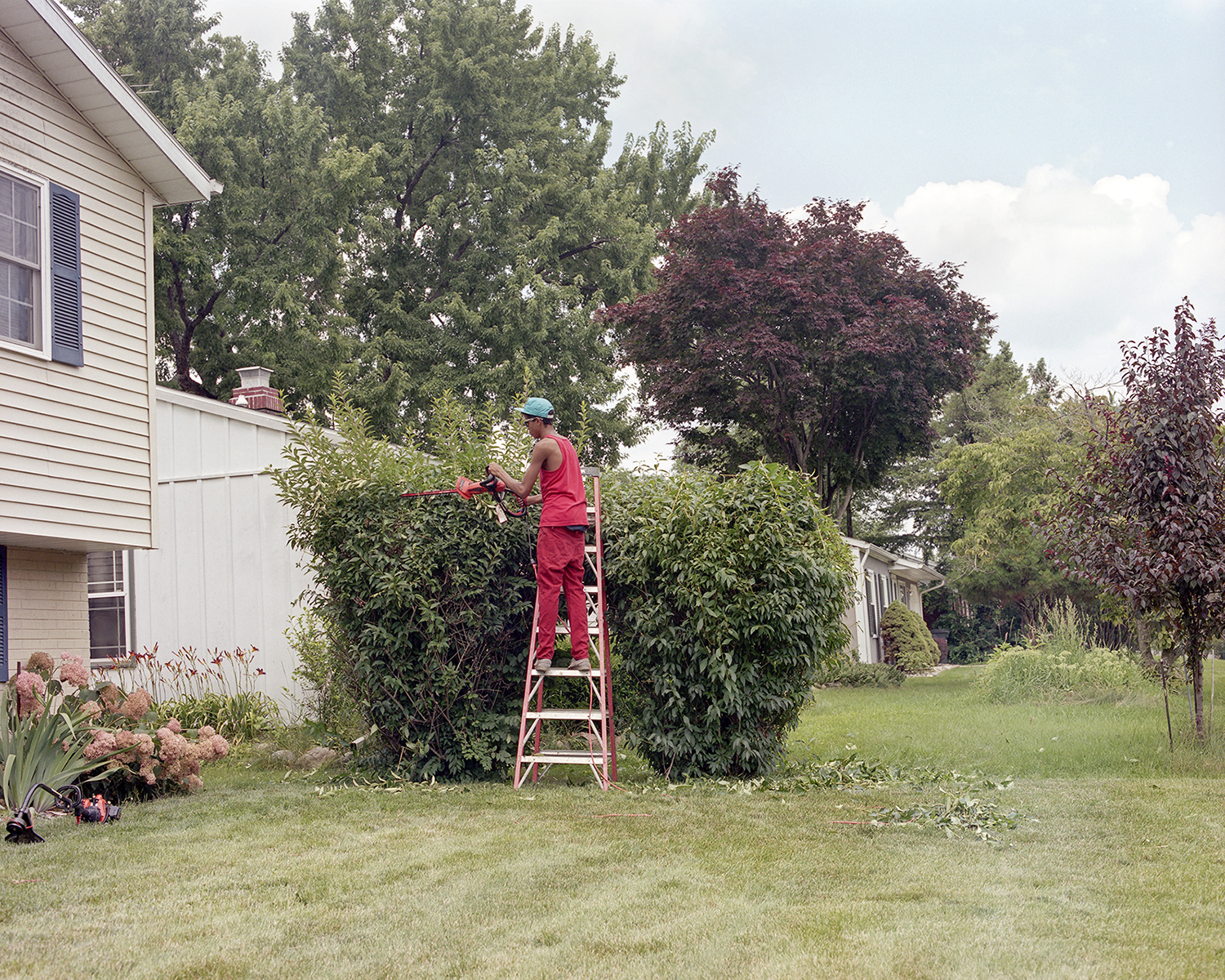 Yardwork ,  Chris Dant