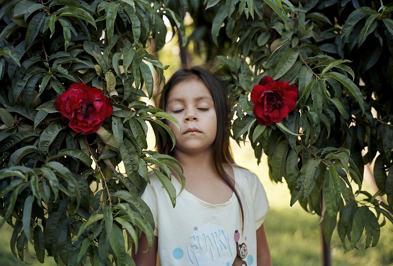 In the Peach Tree, Elk Grove, California ,  Kathya Maria Landeros