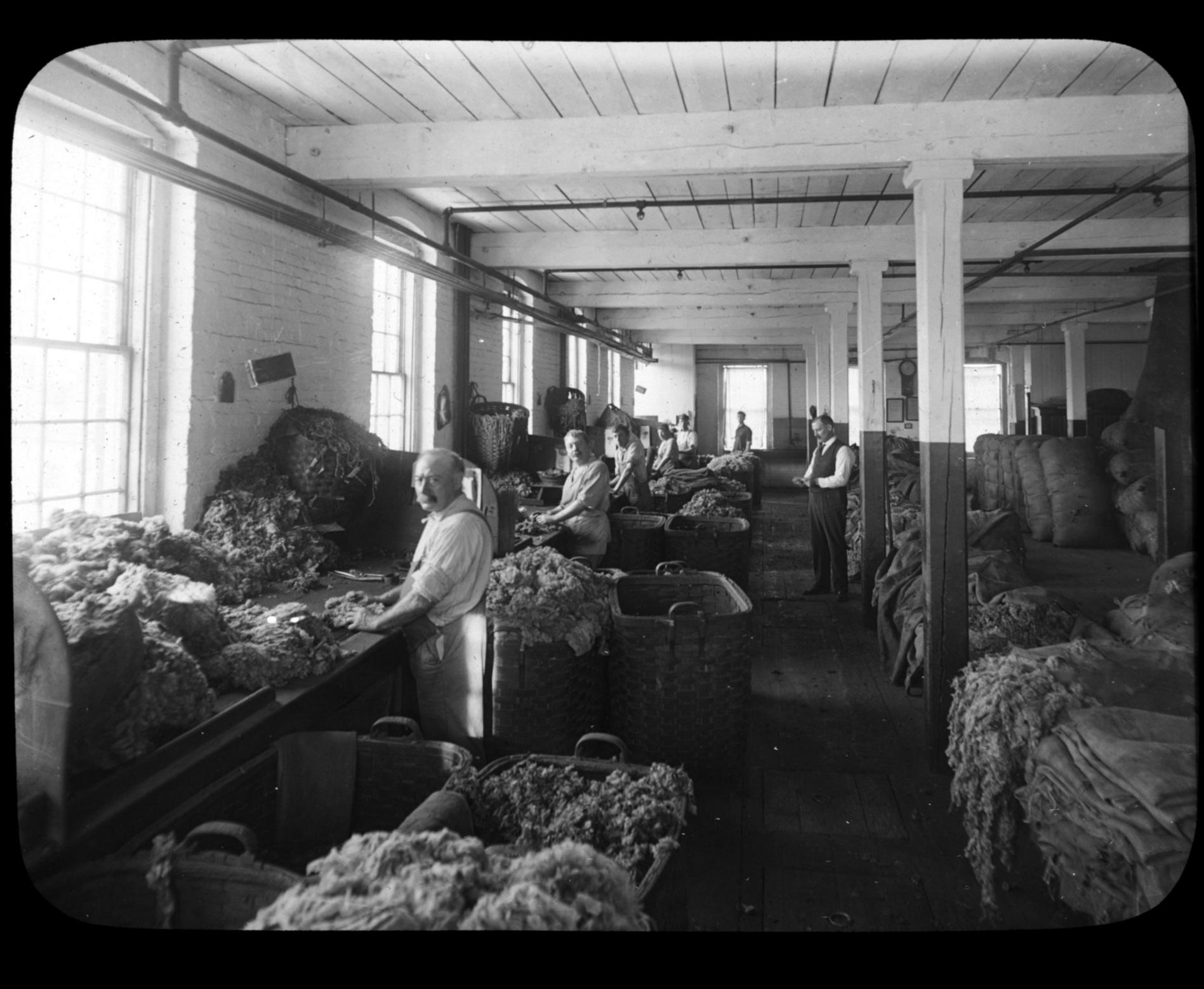 Wool sorting, 1912