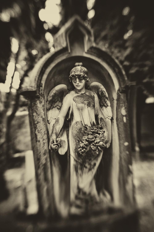 Hadley_Masked-Angel-1887.jpg