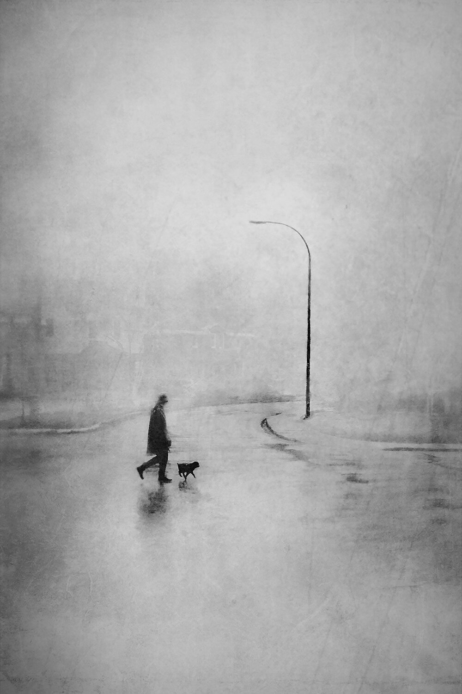 Walking Brutus ,  Daniel Castonguay