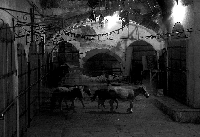 Untitled (Urfa) ,  Mehves Lelic