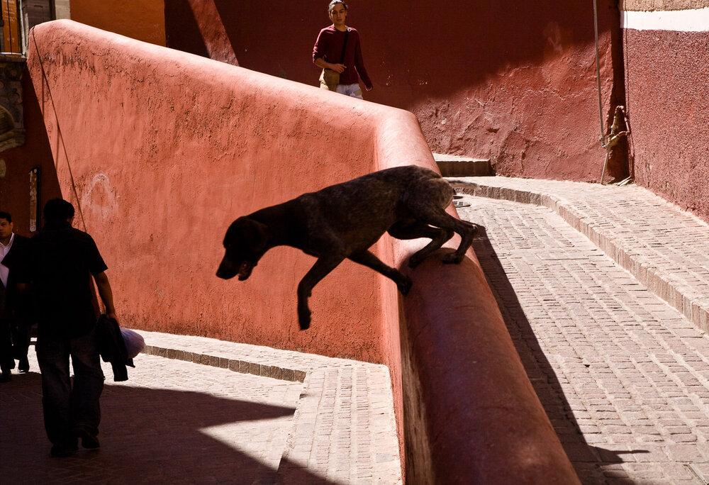Guanajuato, Mexico ,  Ed Peters
