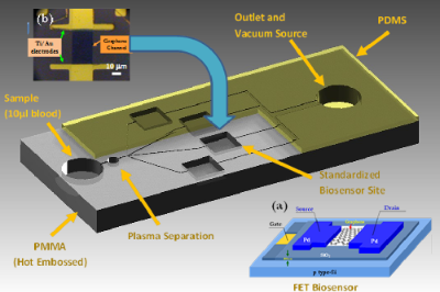 Graphene-Based Diagnostic Sensors