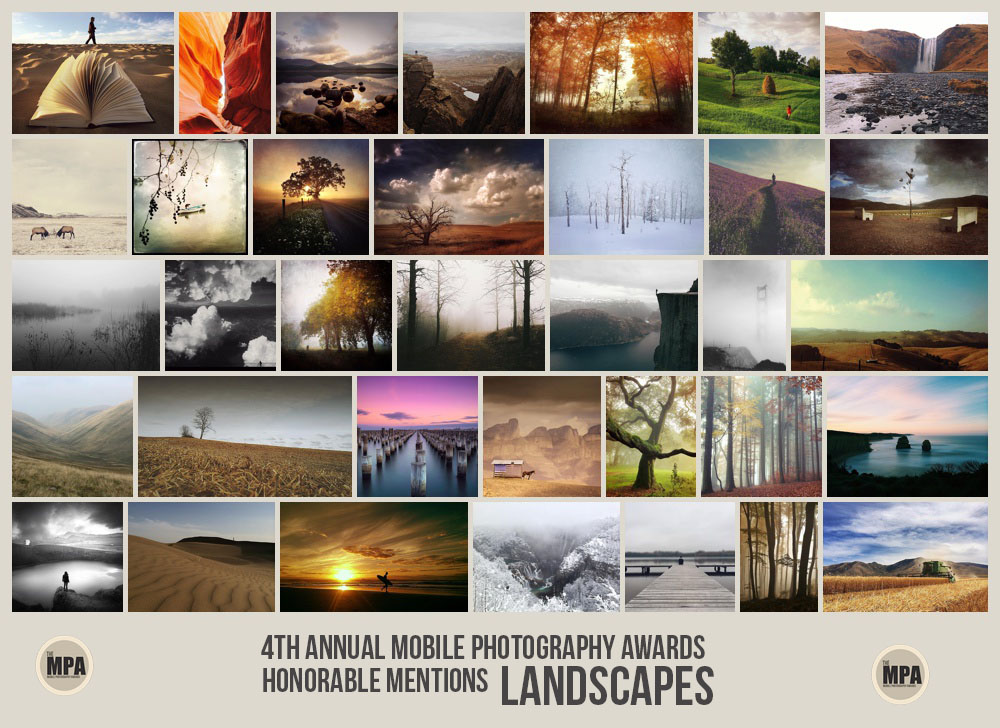 landscapesMPA2014