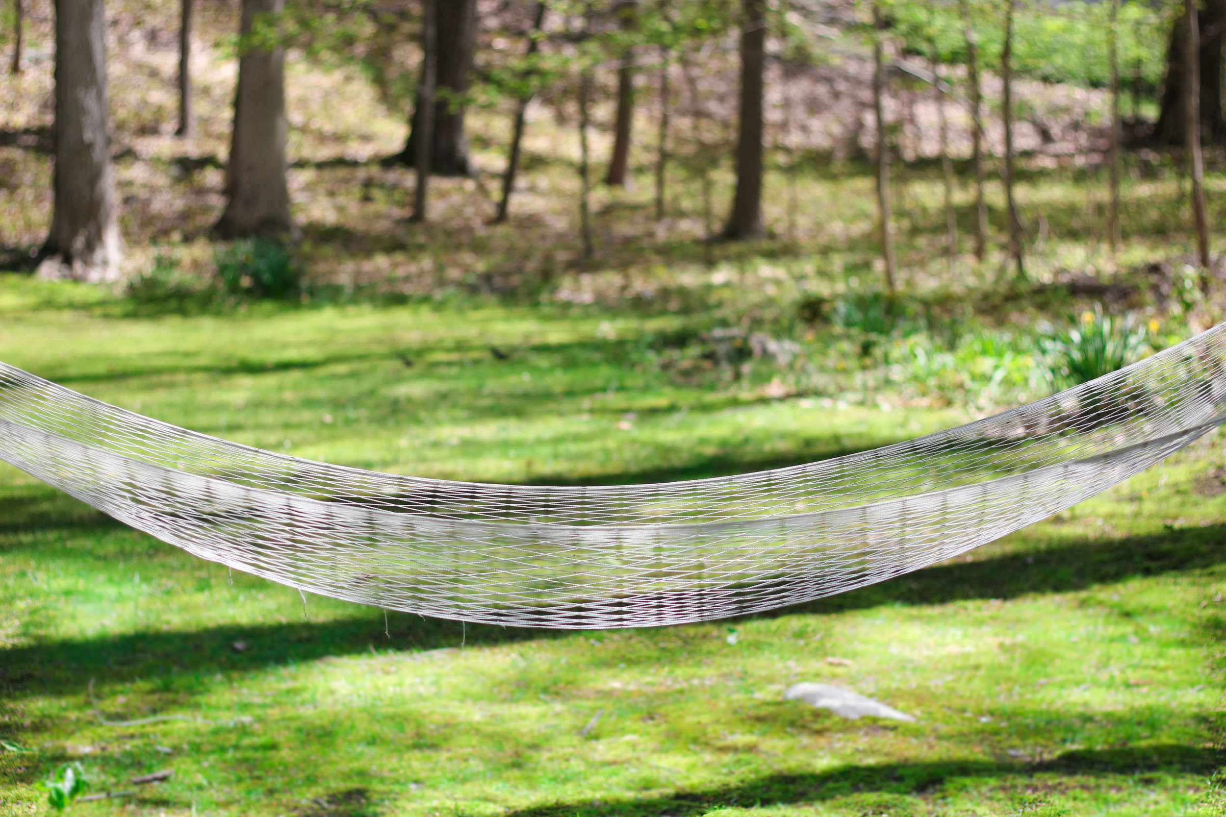 hammock in our backyard, the perfect reading spot