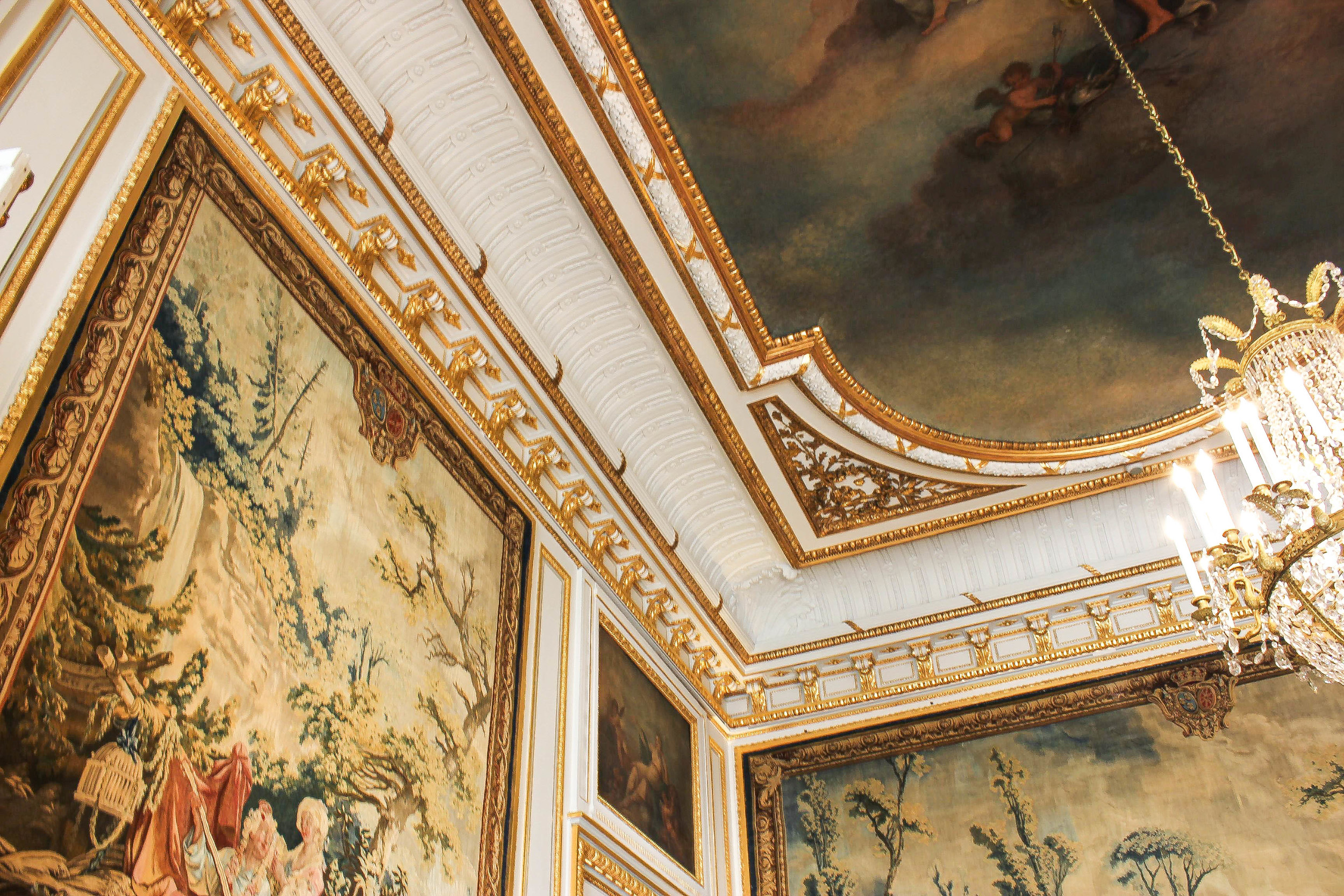 details on the ceiling of the Salon