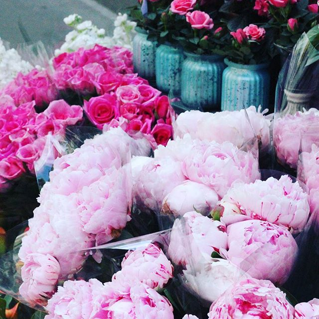 #peonies season 😚 #paris #flowerobsession #pink