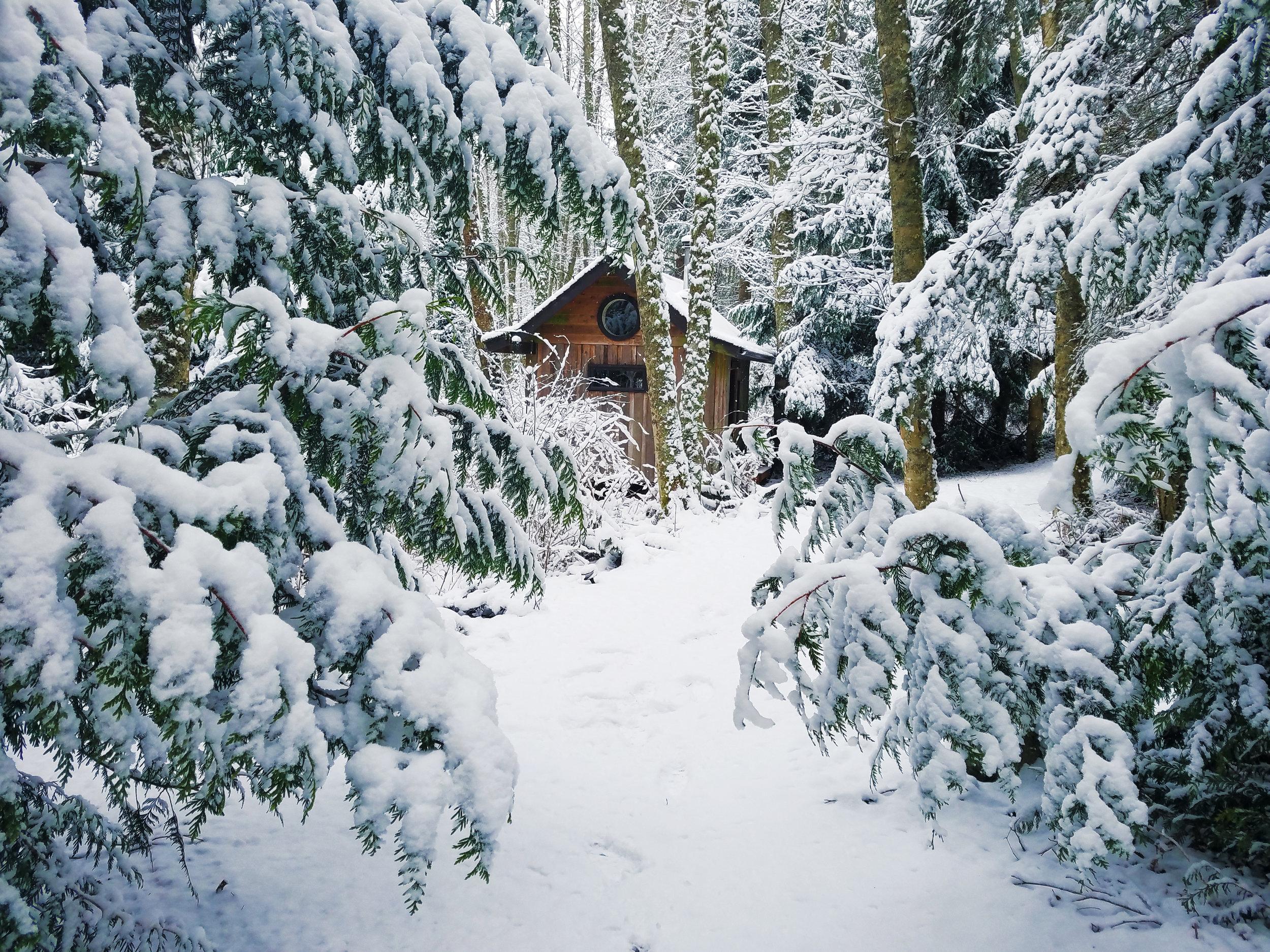Winter Snow 7.jpg