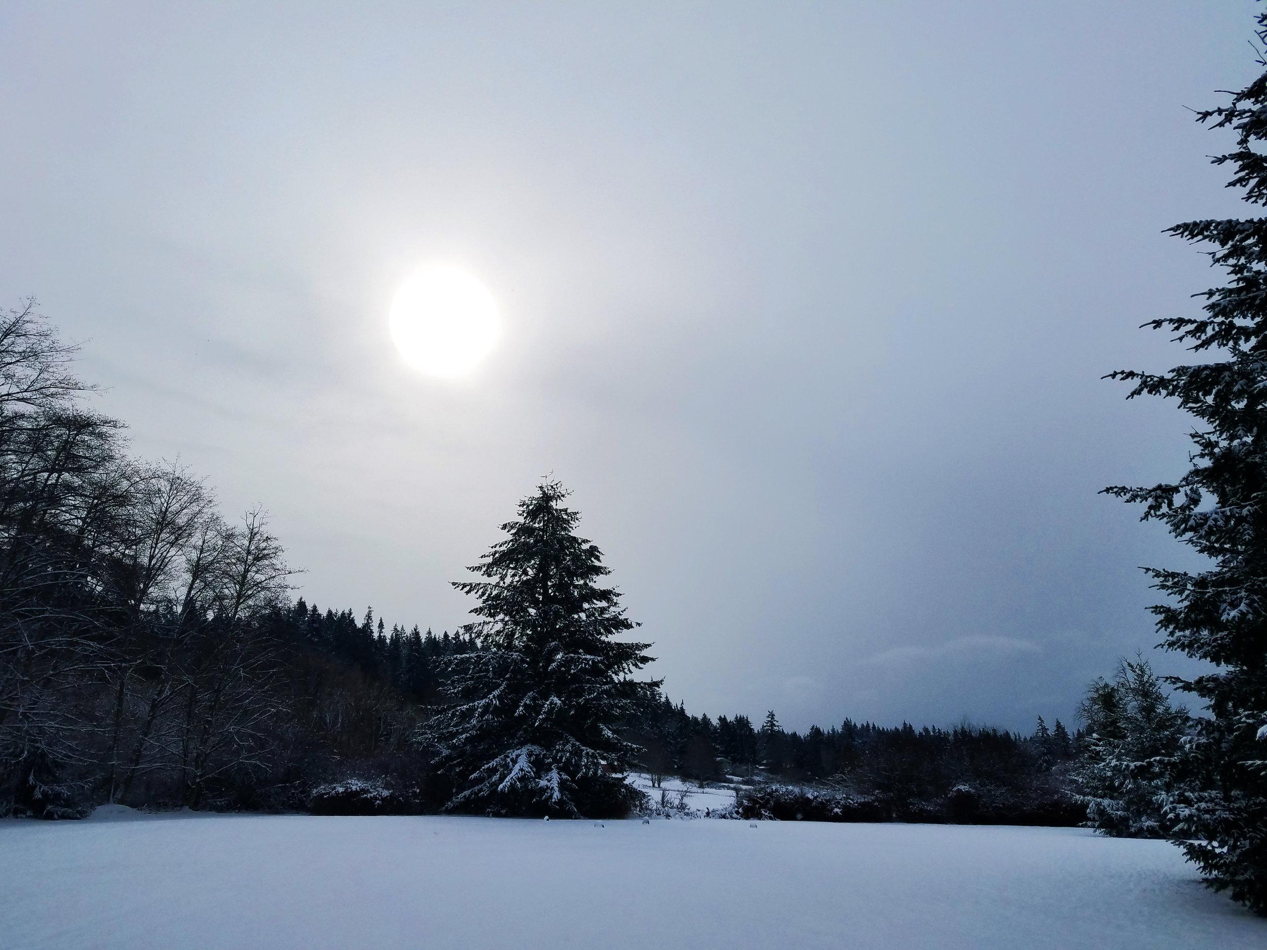Winter Snow 10.jpg