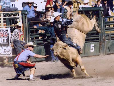 Photo Credit: C+ Rodeos