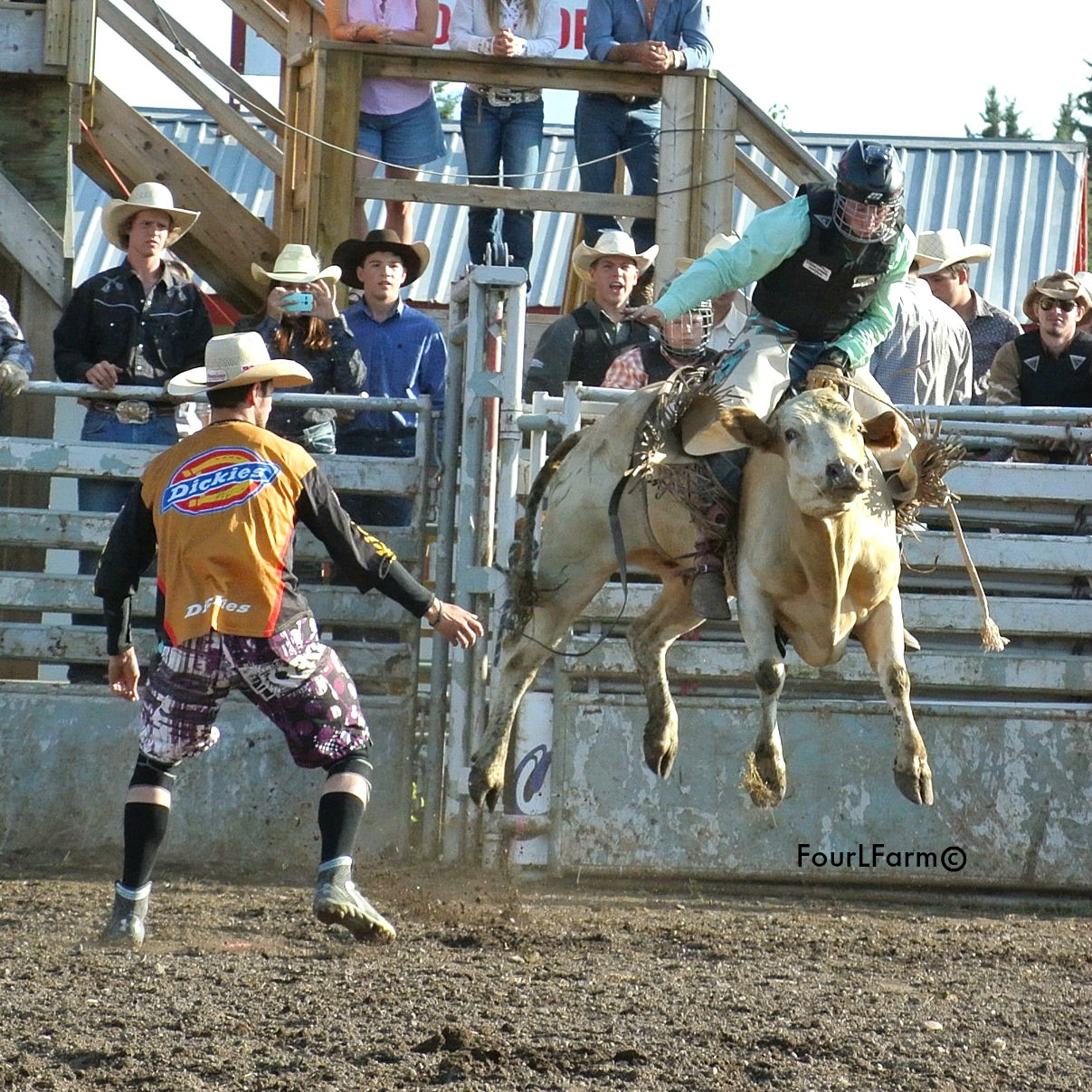Smithers Rodeo Club - Junior Steer Riding