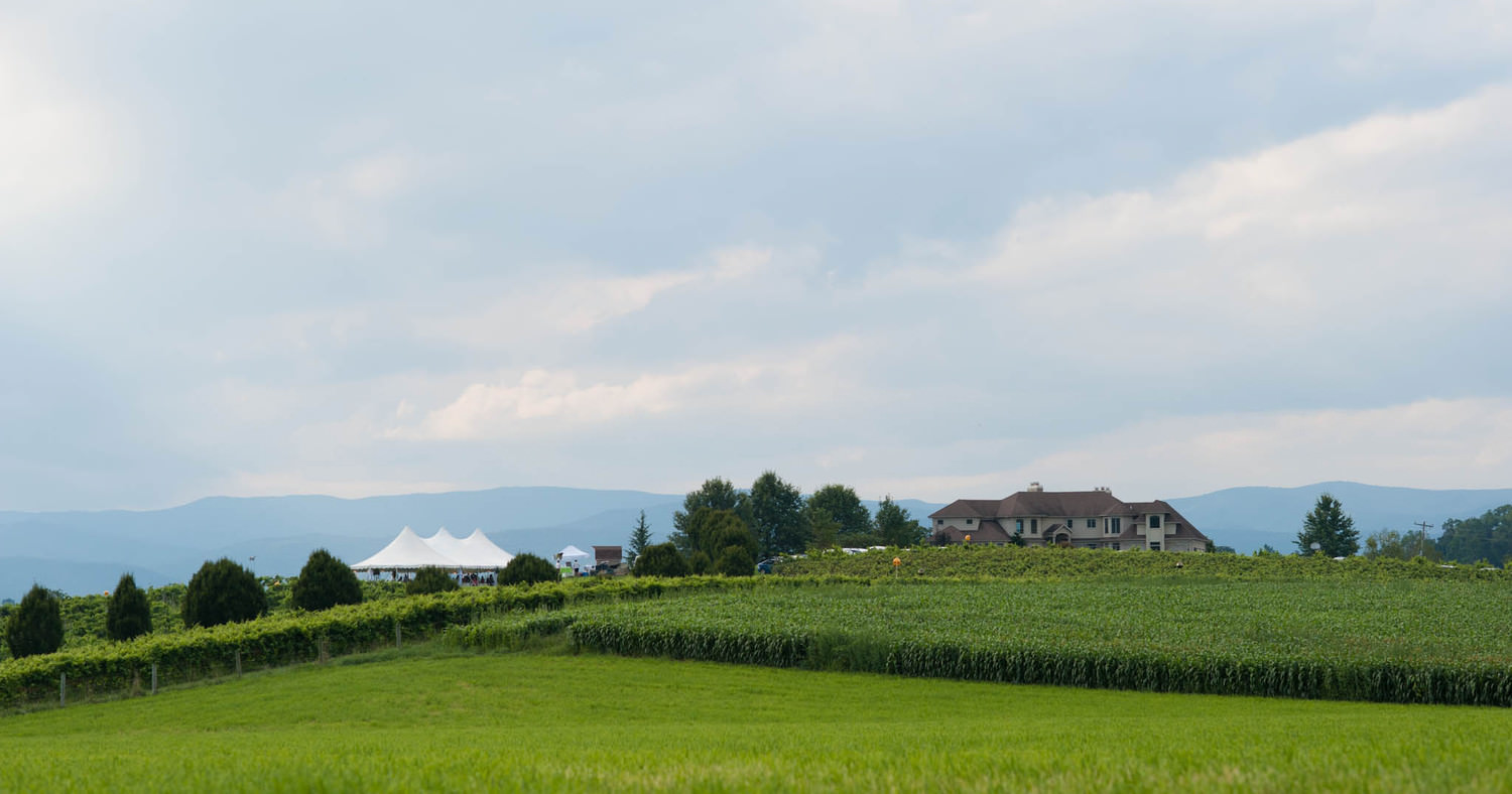Wedding at Bluestone Vineyard in Bridgewater