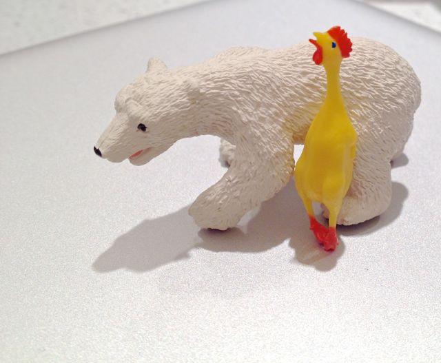 rubber-chicken
