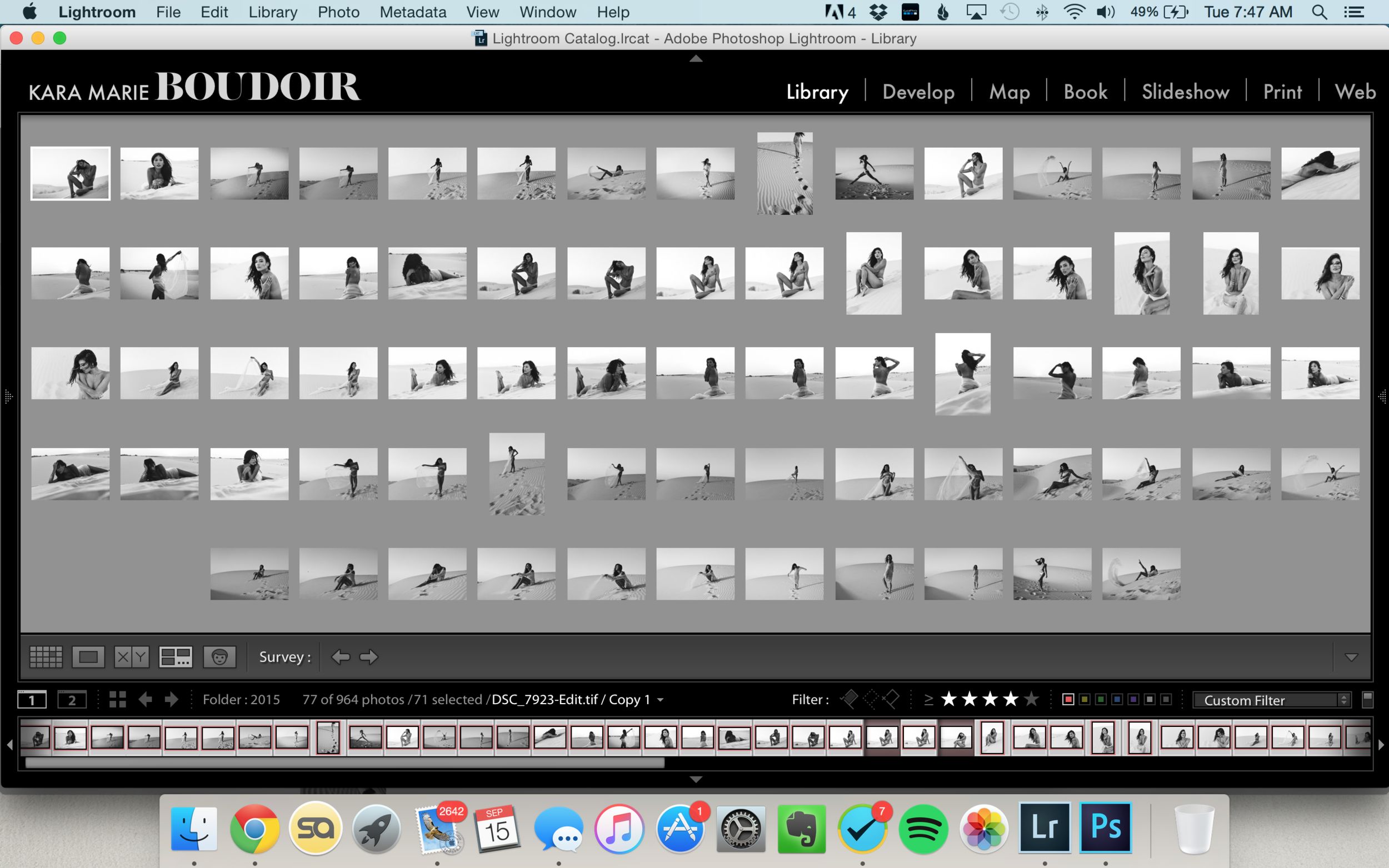 A sample screen of a full collection (from yesterday's blog post! If you haven't, go check it out!)