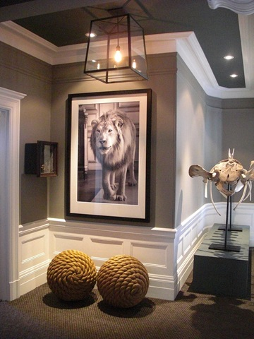 Grey walls with Animal print.jpg