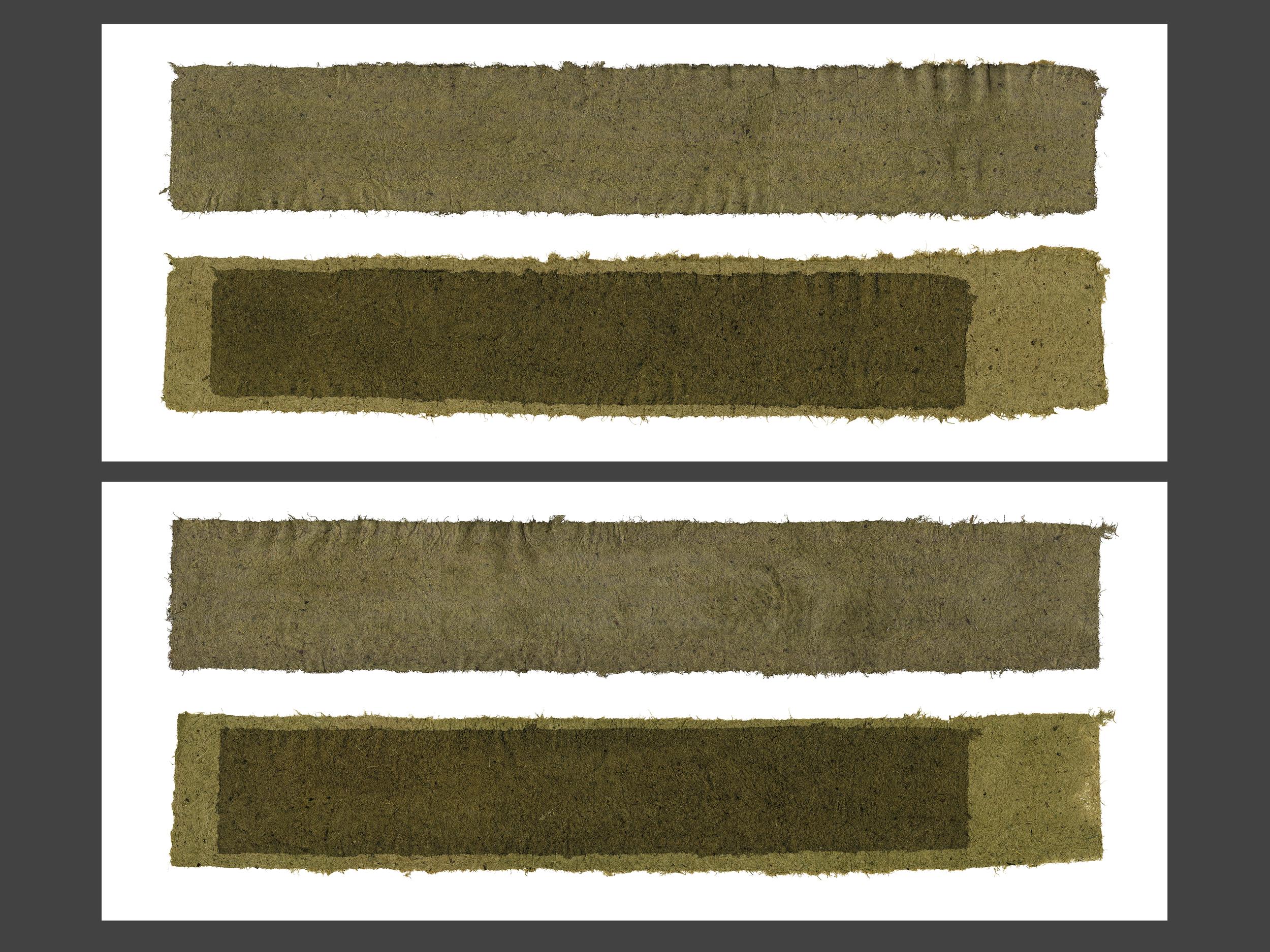 Grass Return Dyptick 1 and 2_2014.jpg