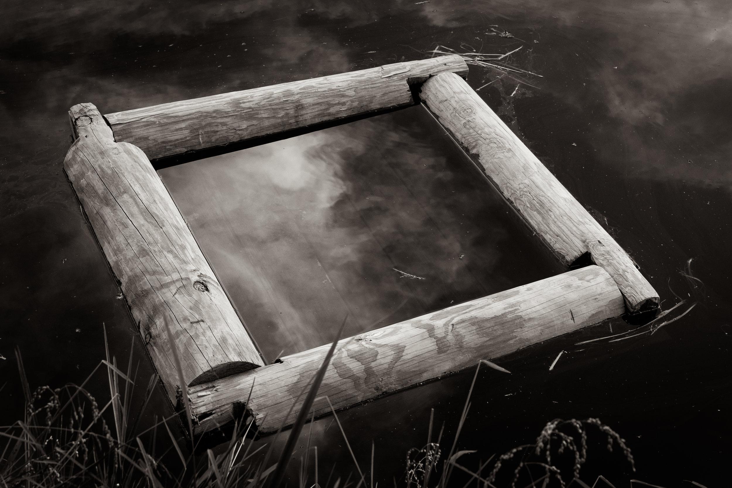© Sal Taylor Kydd