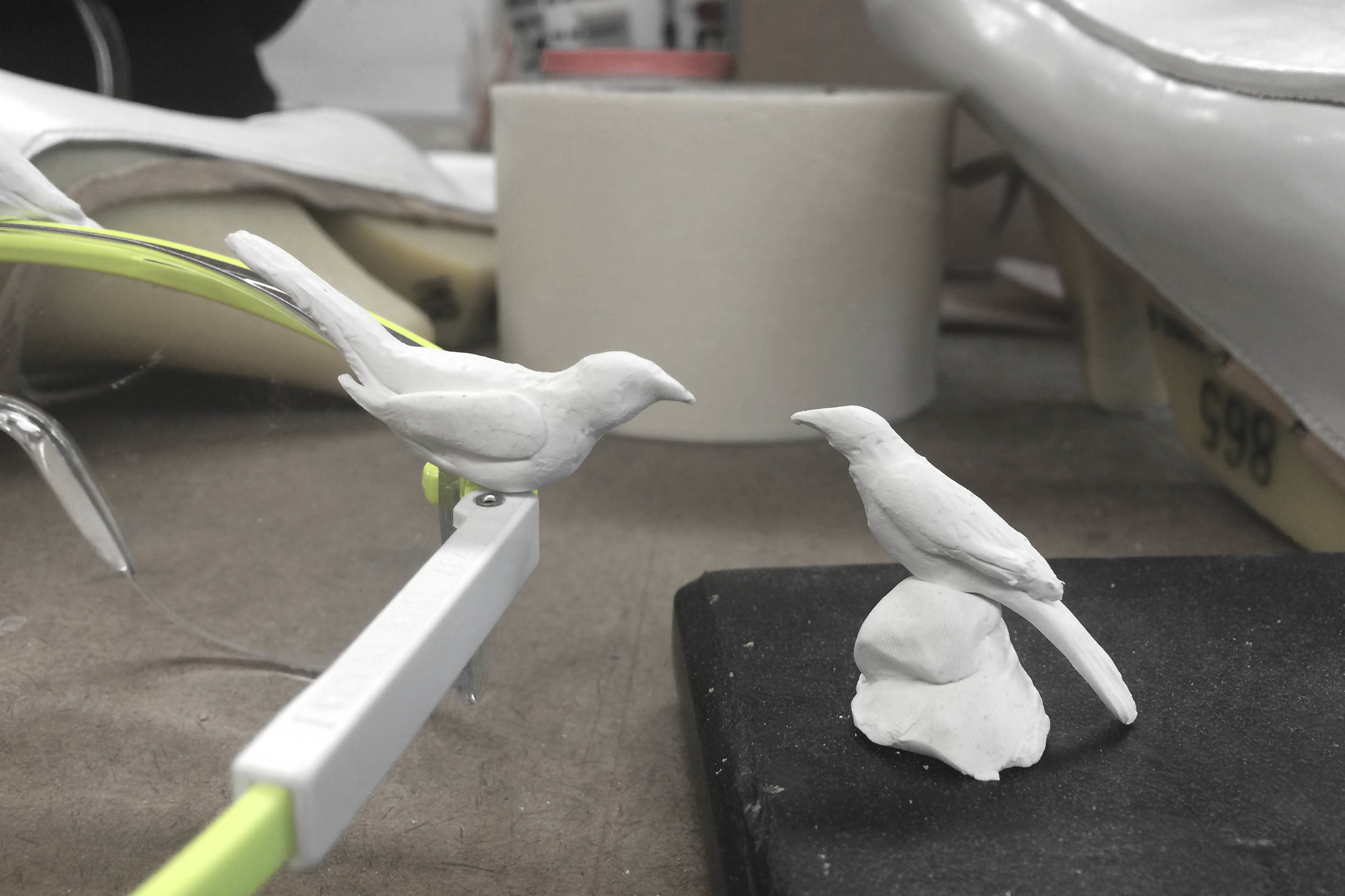 Sculping the birds
