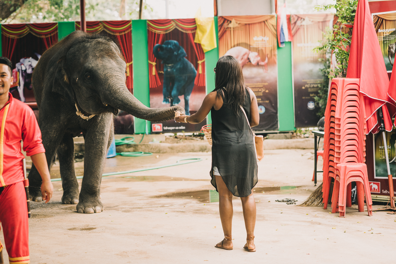 thailand-118.jpg