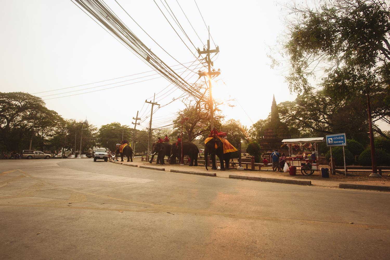 thailand-140.jpg