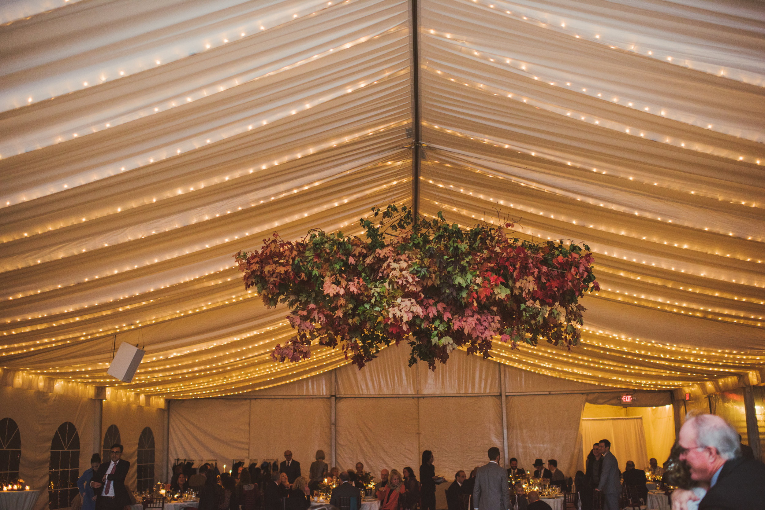 JACQUELINE & ANDREW WARSHAWER -BROOKMILL FARM FALL WEDDING - INTIMATE WEDDING PHOTOGRAPHER - TWOTWENTY by CHI-CHI AGBIM-536.jpg