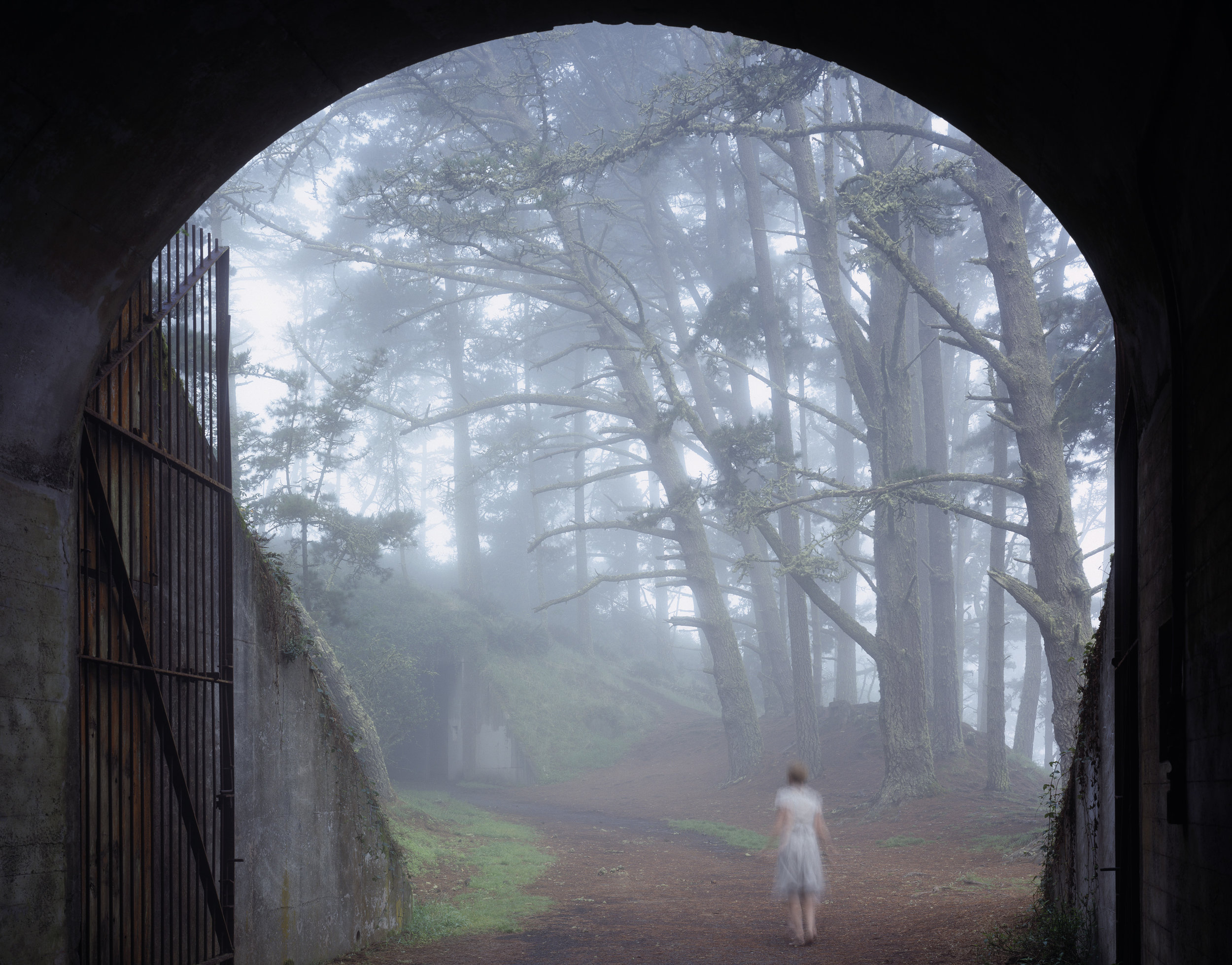 The Tunnel  • 28 X 36 • photographs on fabric // dual layered •  $1,500