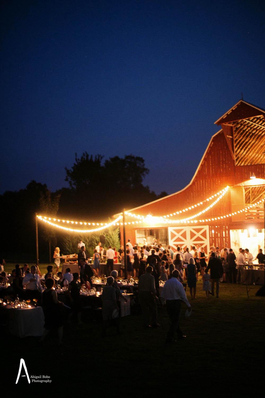 lilac farms at arrington vineyards wedding photography ©2015abigailbobophotography-68.jpg