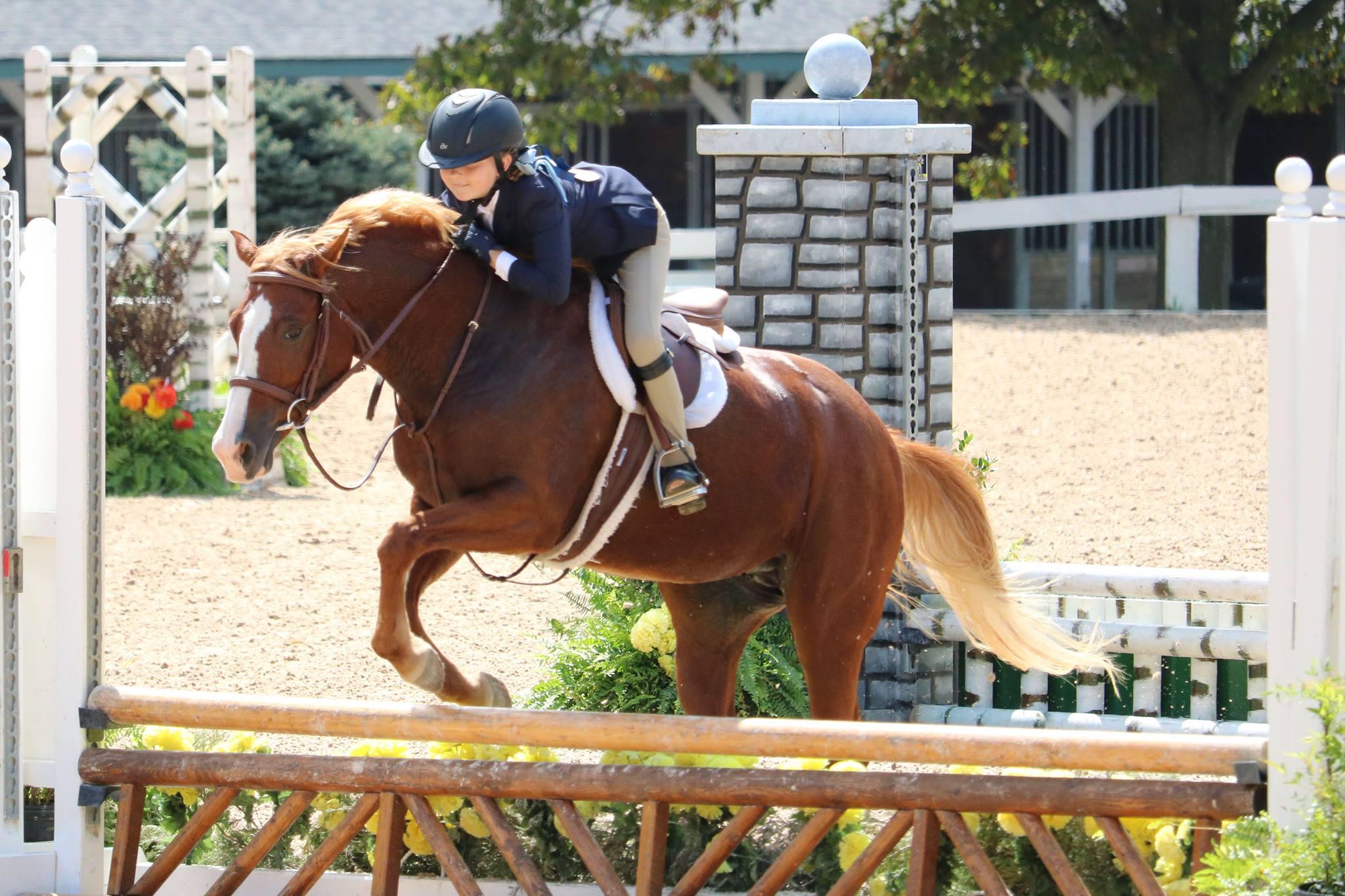 Ponies and pony jockeys :)